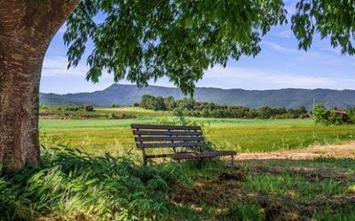 Prijave za digitalni katalog seoskog turizma – Ministarstvo turizma