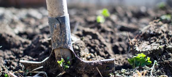 LAG natječaji: Mala poljoprivredna gospodarstva