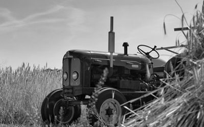 LAG natječaji: Potpora razvoju i modernizaciji poljoprivrednih gospodarstava