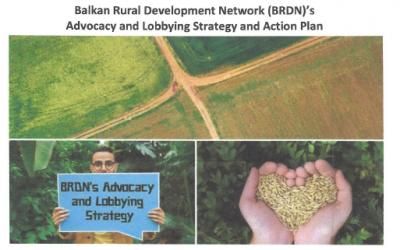 Strategija zagovaranja i lobiranja BRDN-a